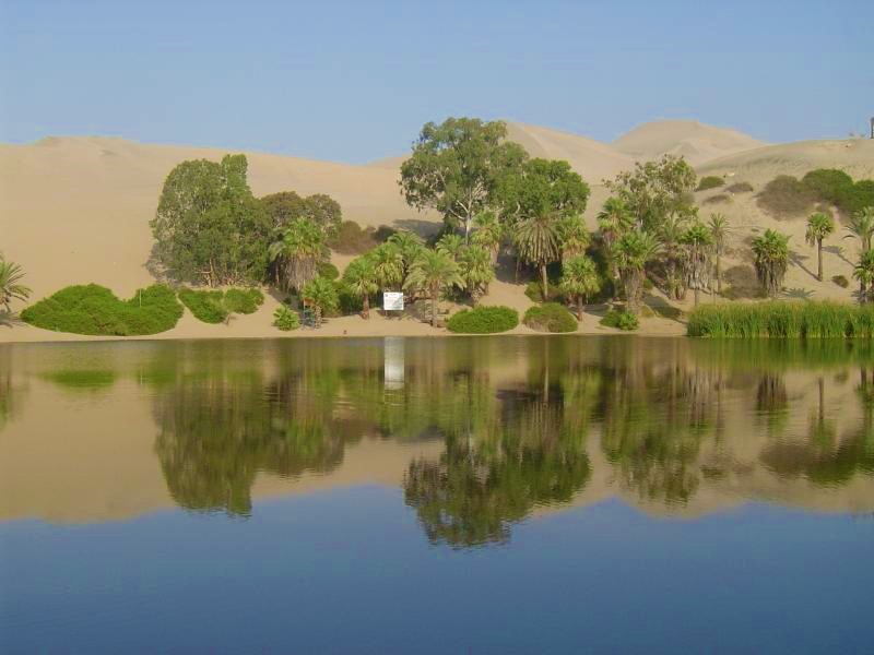 Sandboarding in the Oasis Town of Huacachina!