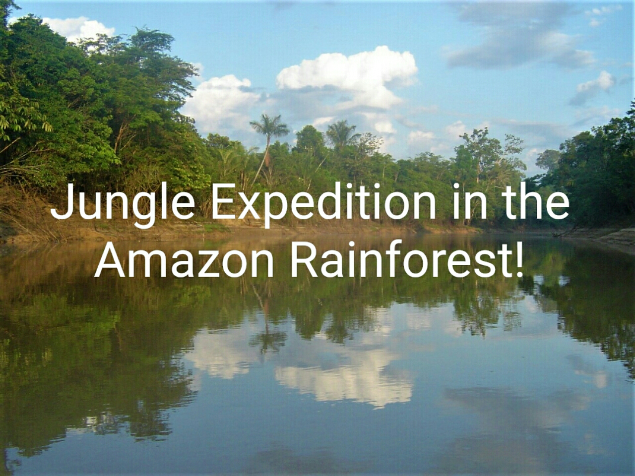 Jungle Expedition in the Amazon Rainforest!